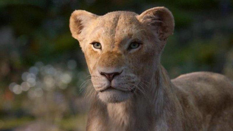 Il re leone: Elisa doppierà Nala nell'edizione italiana del film