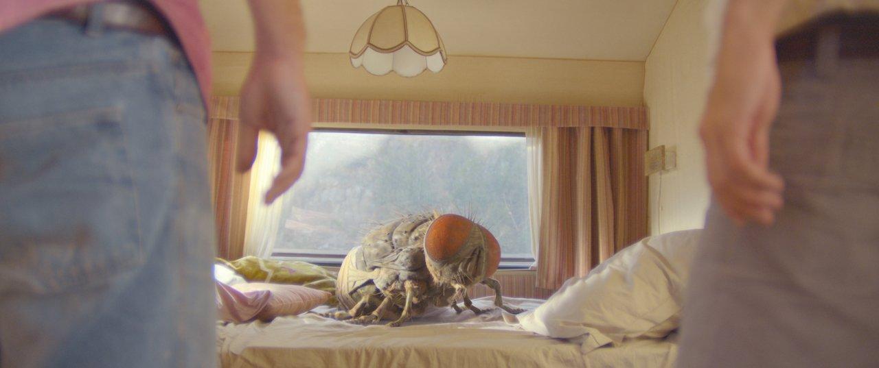 Mandibules – Due uomini e una mosca